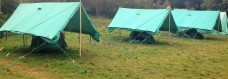 scouts-tents